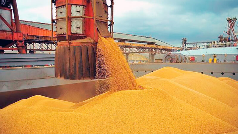 Venda de milho mato-grossense no exterior cai 42% e é a maior em 5 anos